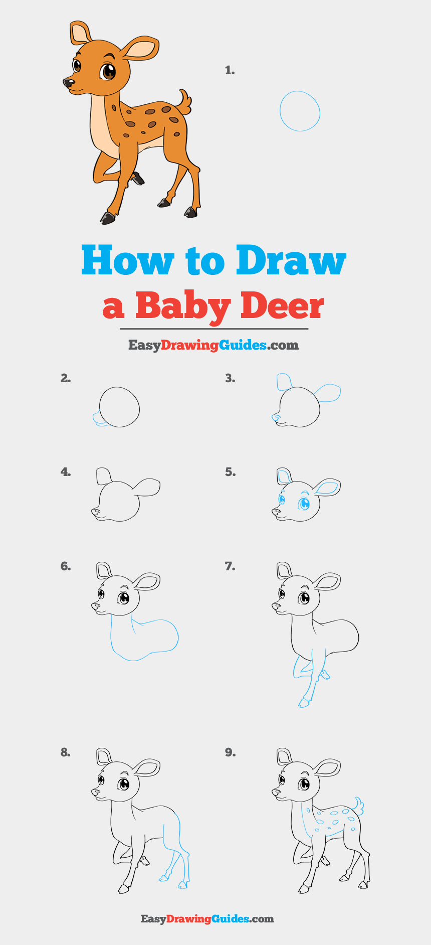 baby deer clip art, Cartoons - How To Draw Baby Deer - Draw A Bluebird Step By Step Easy