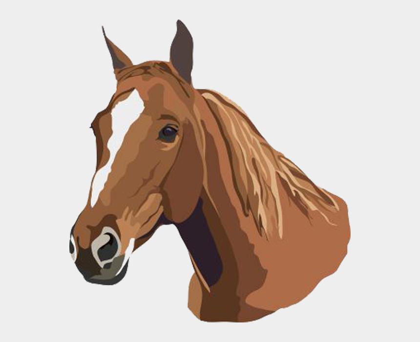 horse head clip art free, Cartoons - Horse Studying - Horse Clip Art Free