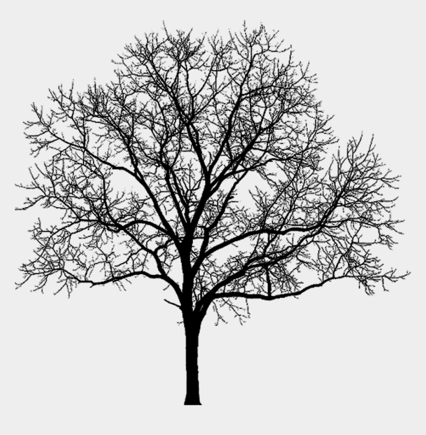 clipart library, Cartoons - More Artists Like Stock Wood Dead Tree 007 By - Cut Out Tree Winter