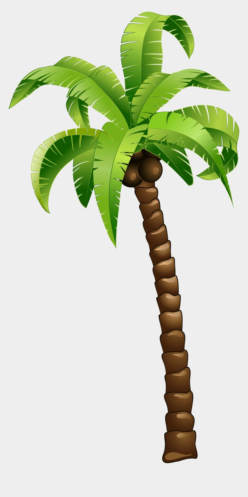 coconut tree clipart, Cartoons - Cartoon Green Coconut Tree - Beach Background Summer Design
