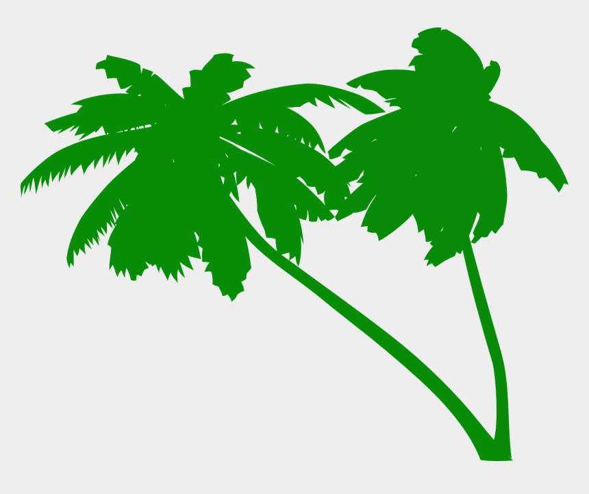 coconut tree clipart, Cartoons - Palms Coconut Tree Coconut Palms Tropical Beach - Green Palm Tree Vector