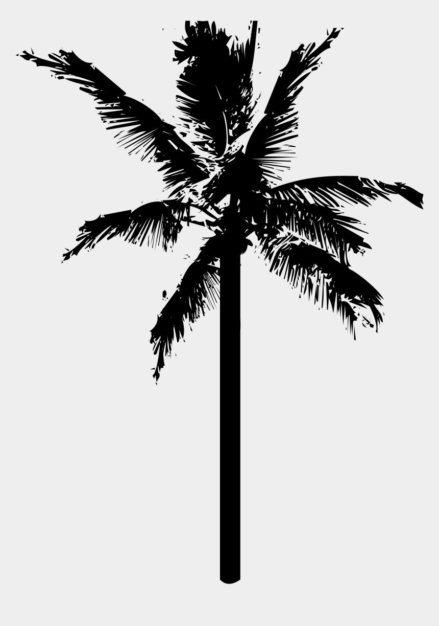 coconut tree clipart, Cartoons - Coconuts Vector Black And White - Palm Tree Icon Png