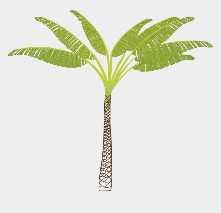 family tree clipart, Cartoons - T Shaped Tree Clipart T Shaped Tree Clipart - T Shaped Palm Tree