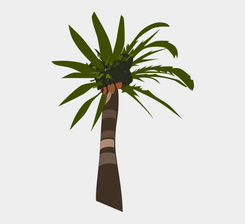 coconut tree clipart, Cartoons - Palm Tree Plant Tropical Coconuts - Palm Oil Tree Silhouette