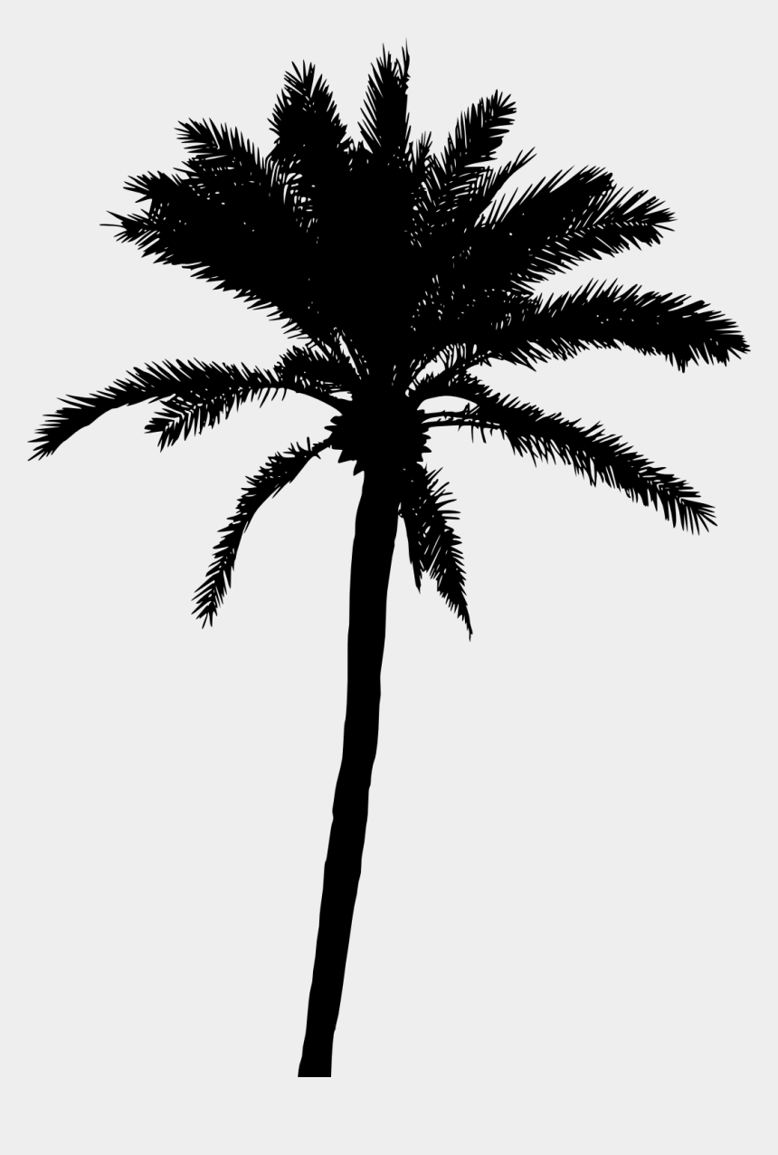 coconut tree clipart, Cartoons - 20 Palm Tree Silhouette Vol - Palm Tree Vector Png