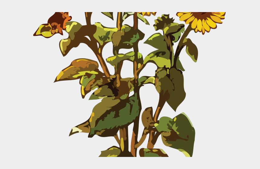 family tree clipart, Cartoons - Trees Clipart Gumamela - Sun Flowers In Vector Png