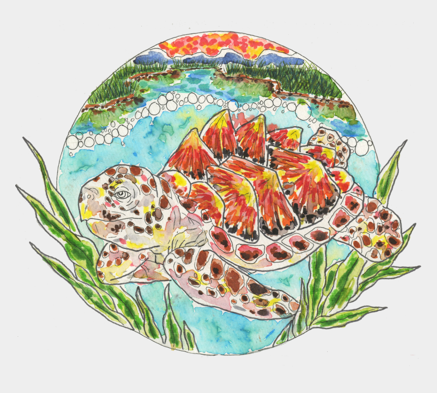 earth day 2017 clipart, Cartoons - Core Sponsors Loggerhead Turtle - Ophrys