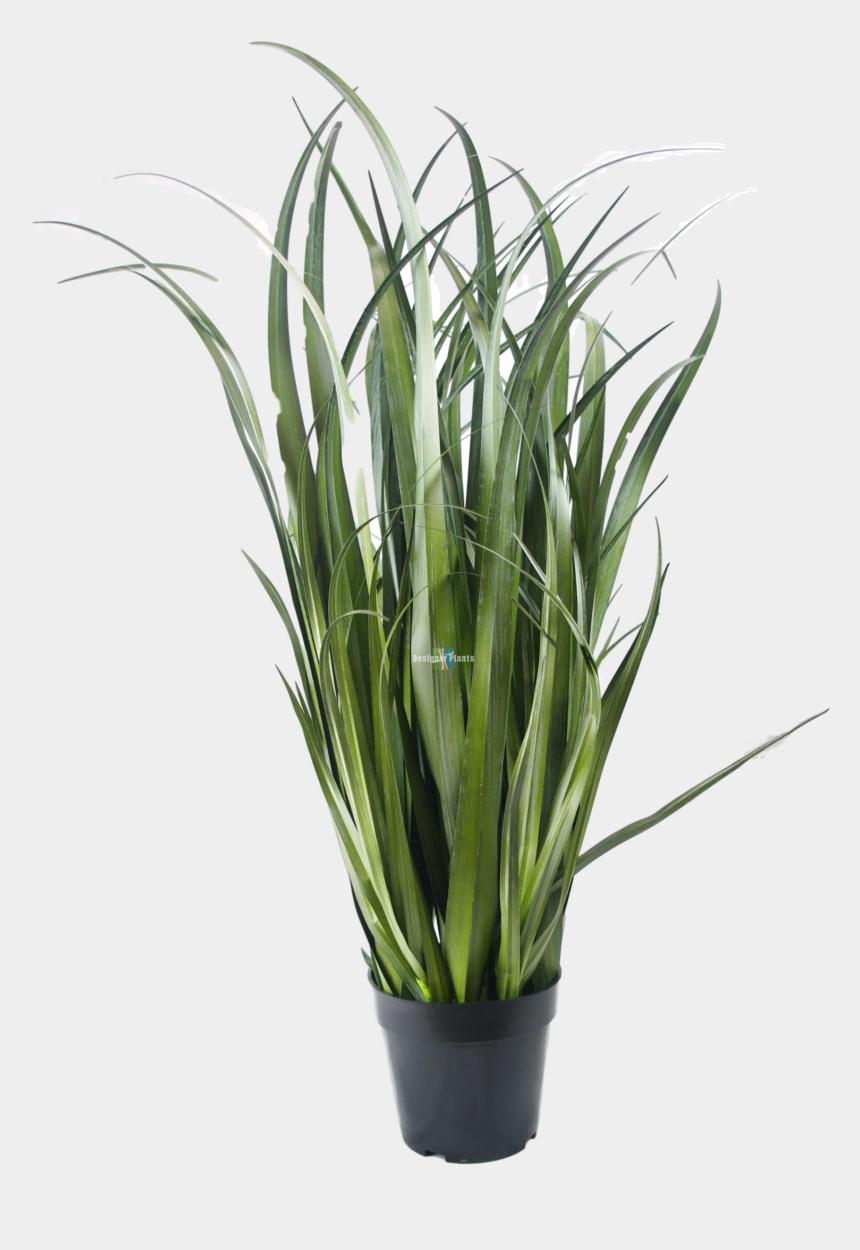 tall grass clip art, Cartoons - Fake Dense Grass Plant - Fake Plant Png
