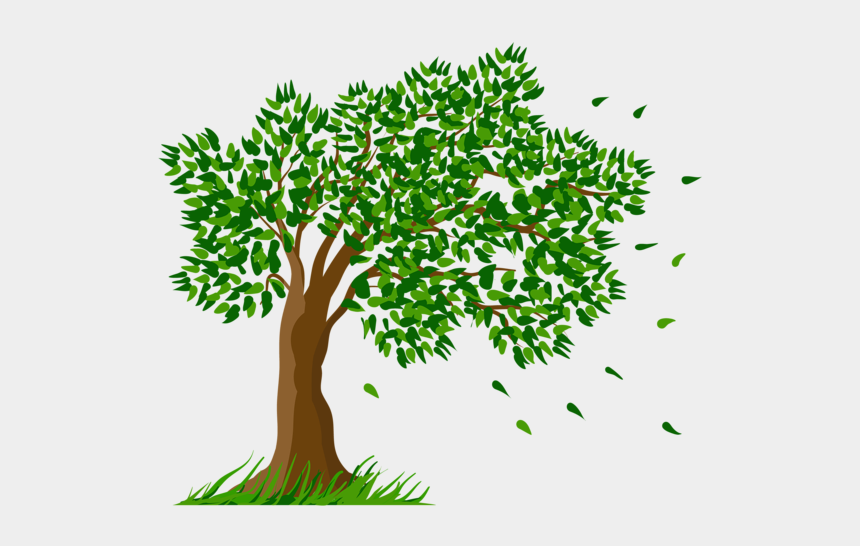 herbs clipart, Cartoons - Tree Transparent Clipart Picture Craft Activities, - Trees And Flowers Drawing