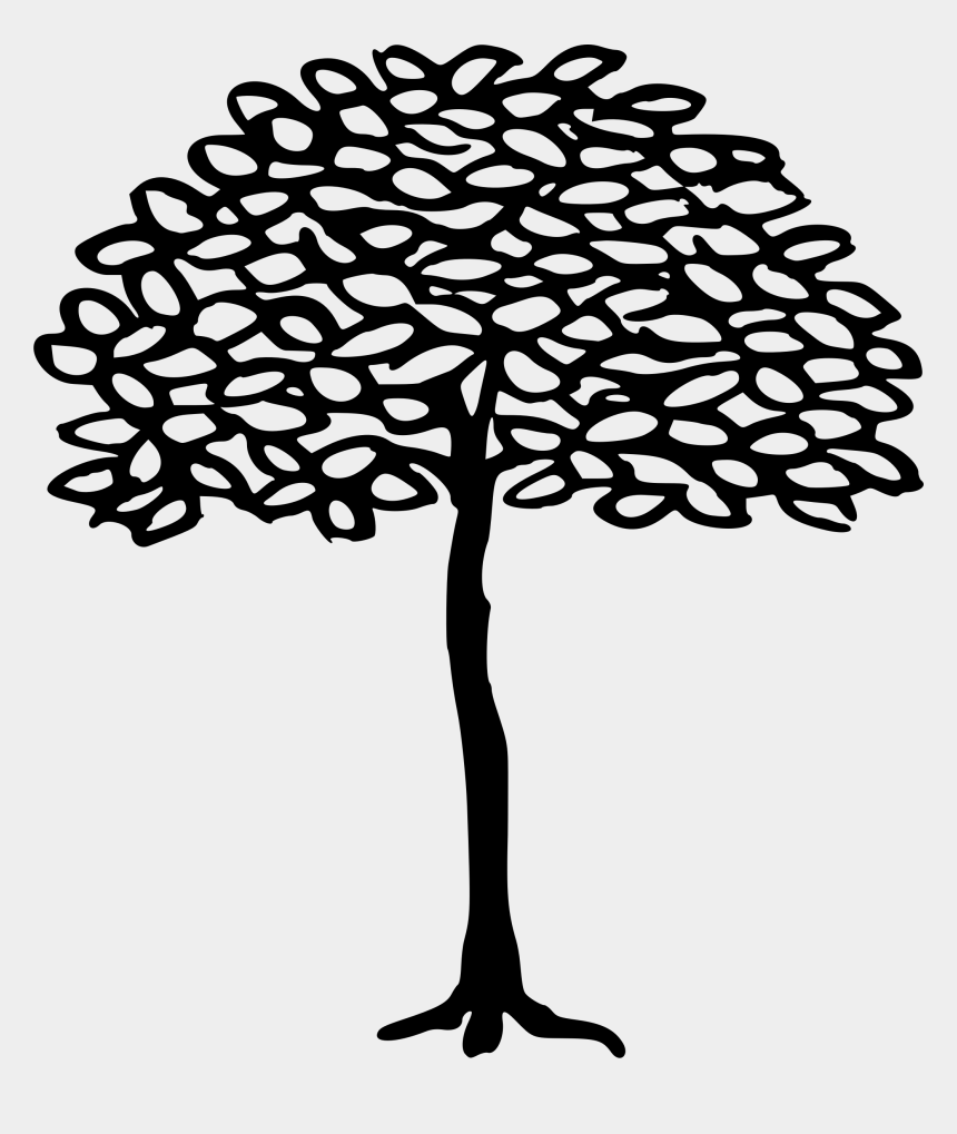plant cell clipart, Cartoons - Clipart - Line Drawing Simple Tree