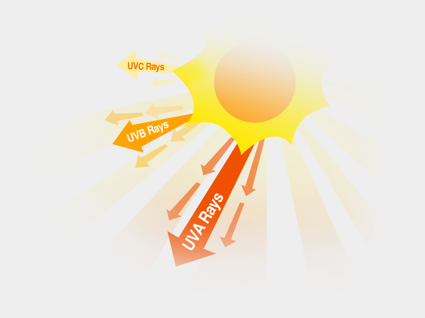 fun facts clipart, Cartoons - Good And Bad Effects Of Uv Rays, You Choose - Caring For All Life Under Sun