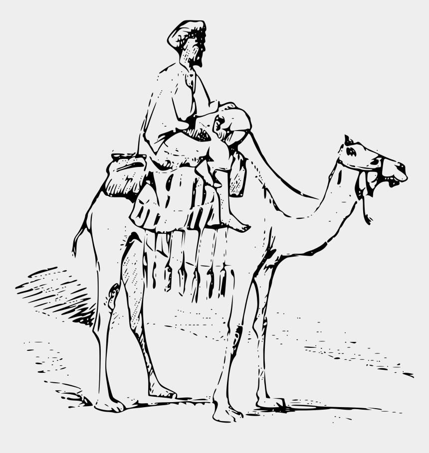 camel images clip art, Cartoons - Drawing Camels Line Art - Camel In Desert Drawing