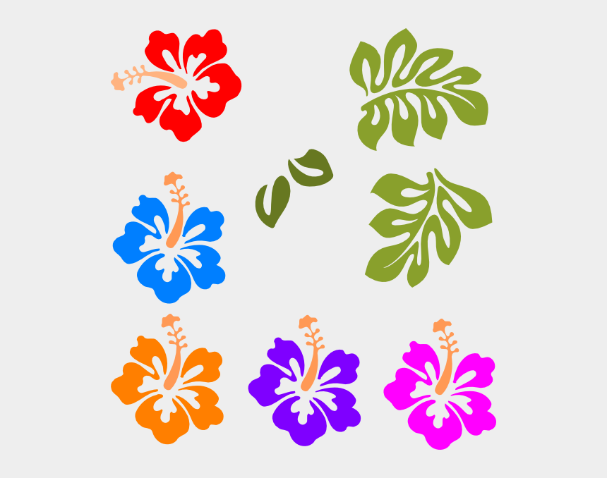 photo relating to Printable Hawaiian Flowers identified as Hawaiian Flower Clip Artwork - Absolutely free Printable Hibiscus Flower