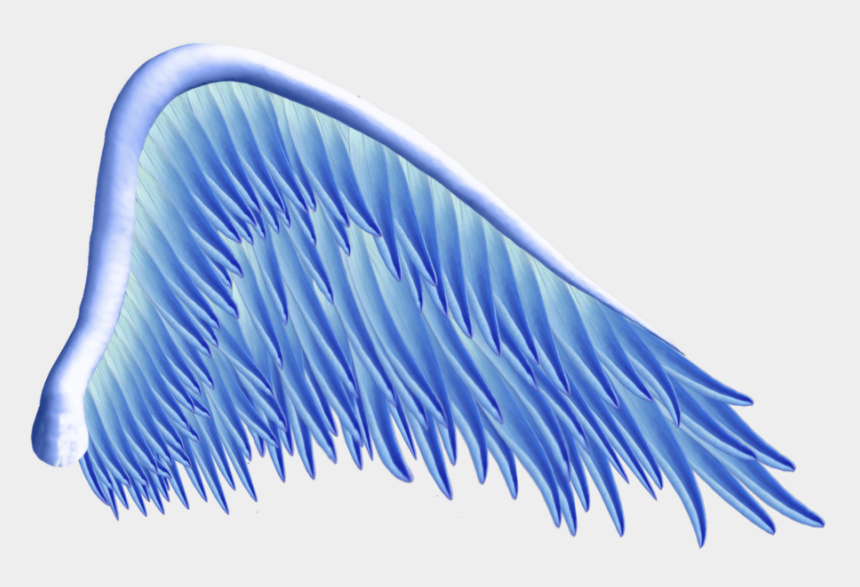 angel wings clipart, Cartoons - Wings Tattoos Png Transparent Images - Blue Angel Wings Png