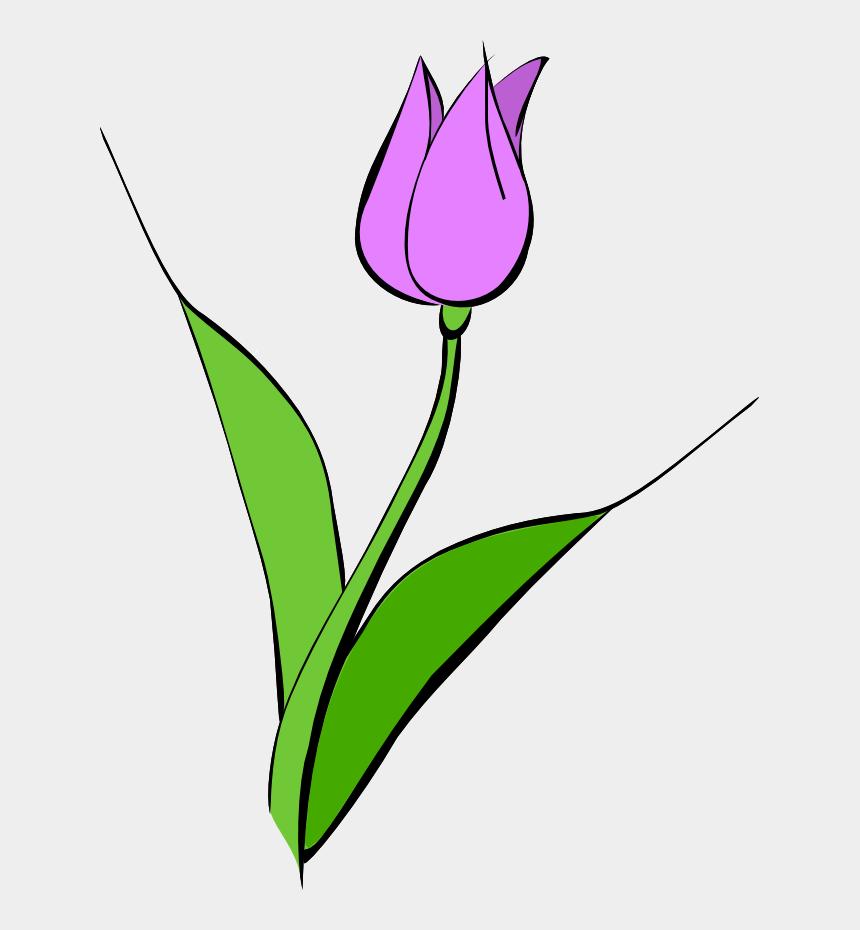 clip art border, Cartoons - Tulip Clip Art Border Free Clipart Images - Tulip Clipart