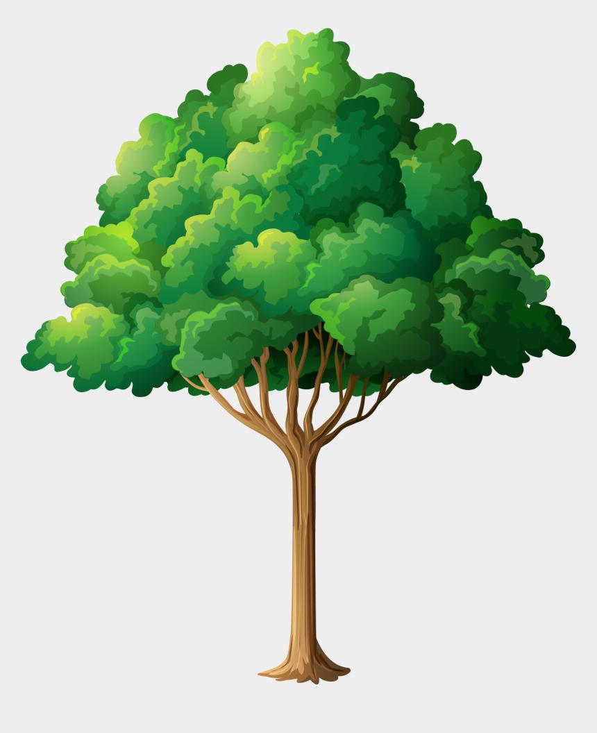 tree limb clip art, Cartoons - Tree Branch Clip Art - Transparent Background Family Tree Clipart