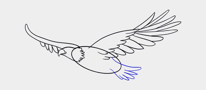 bald eagle head clip art, Cartoons - How To Draw Eagle - Draw A Flying Eagle