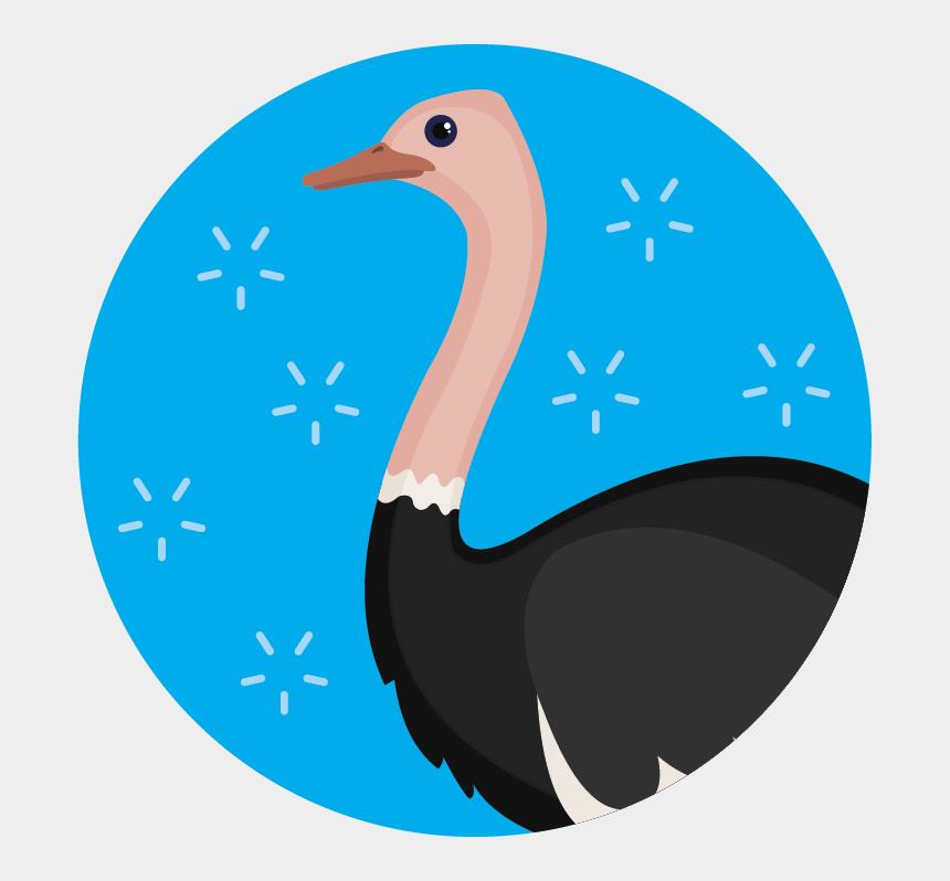 ostrich head in sand clip art, Cartoons - Flightless Bird