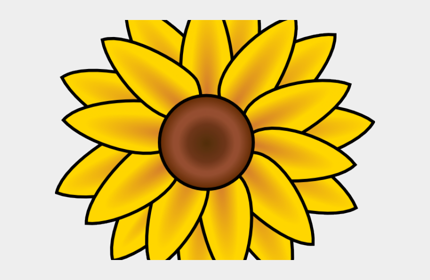 Sunflower Clipart Wildflower Easy Simple Sunflower Drawing Cliparts Cartoons Jing Fm