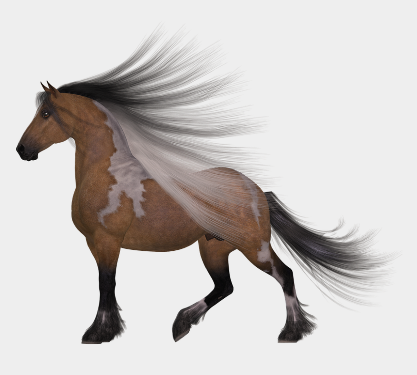 race horses clipart, Cartoons - Horse, Mane, Wind, Brown, White - Real Horse Head Silhouette