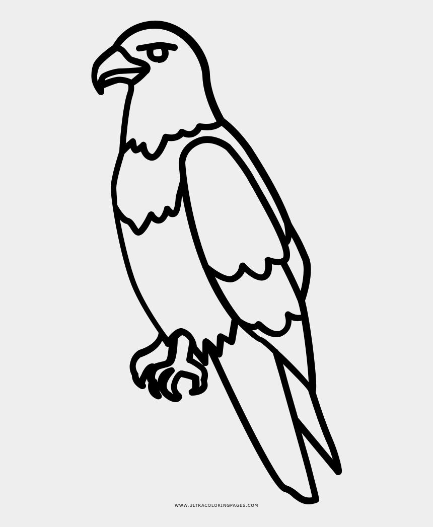 patriotic bald eagle clip art, Cartoons - Drawing