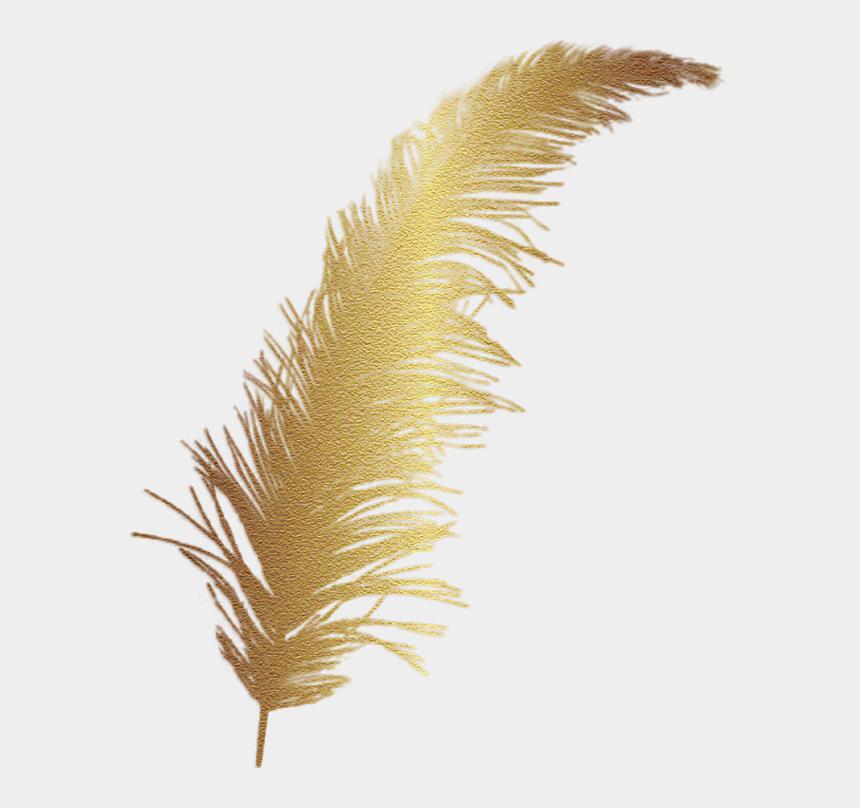 gold feather clip art, Cartoons - #gold #goldfeather #feather #decor #decals #decoration - Golden Feather Png