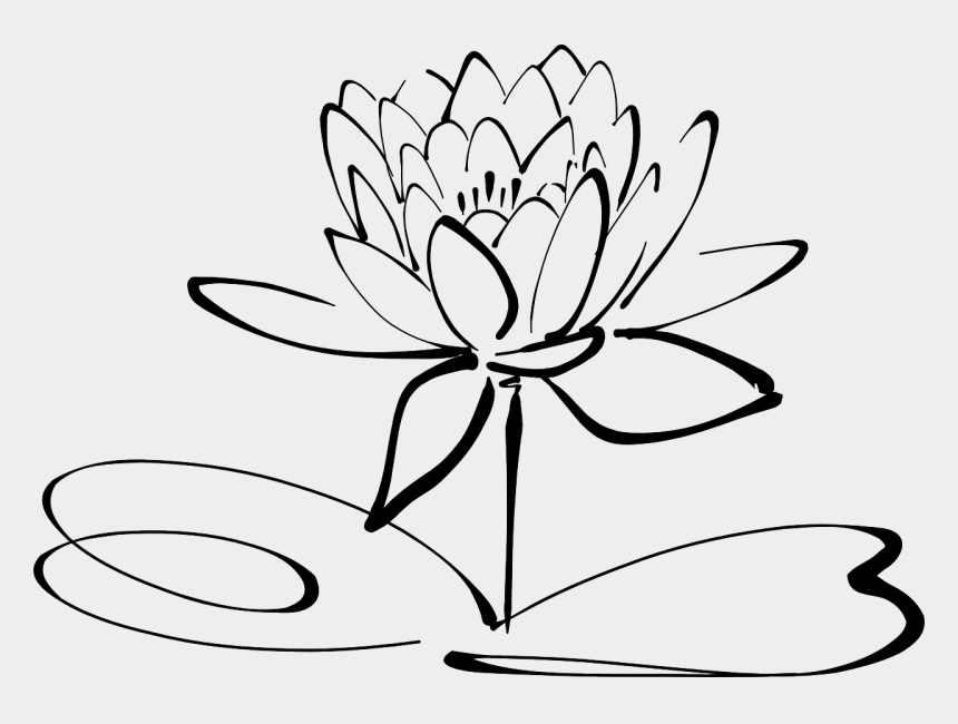 lillypad clip art, Cartoons - Lotus Flower Line Art Free Photo - Lotus Flower Clipart Black And White