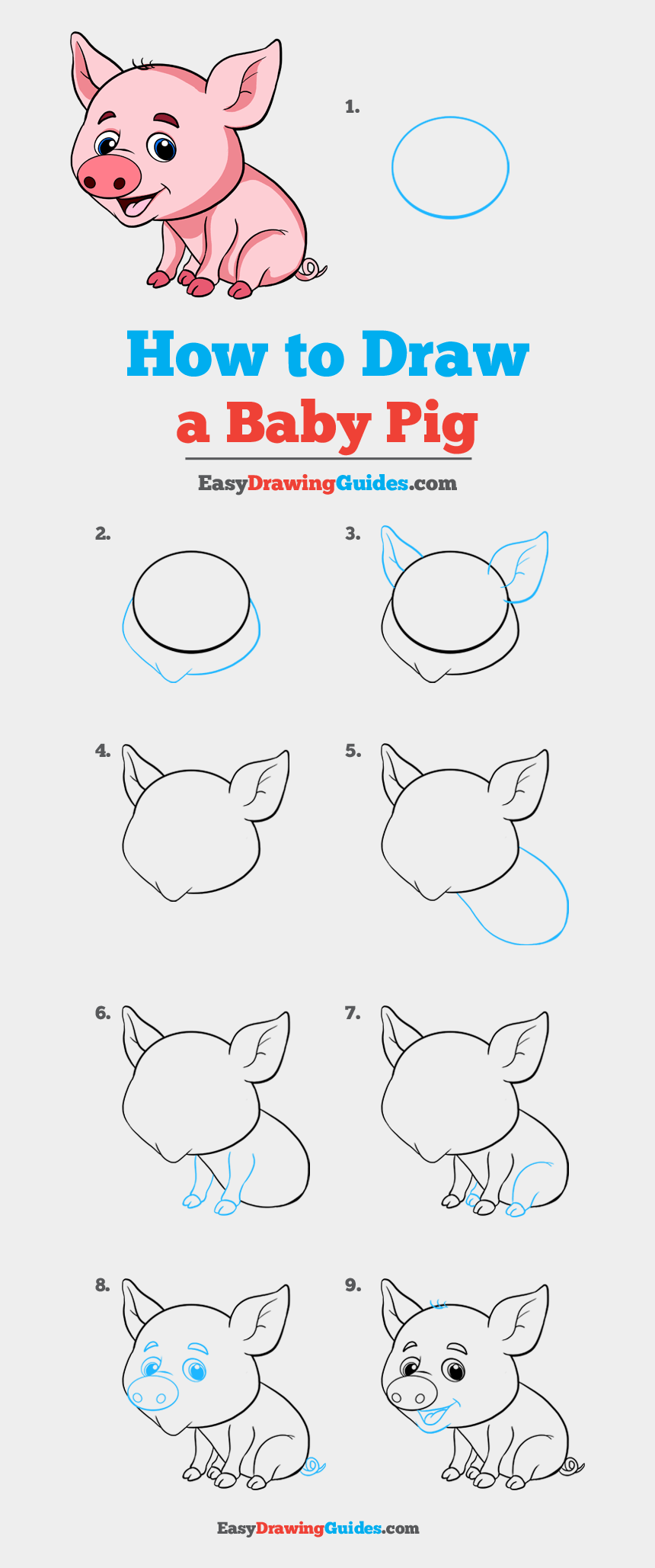 baby pig clip art, Cartoons - How To Draw Baby Pig - Step By Step Pig Drawing Easy
