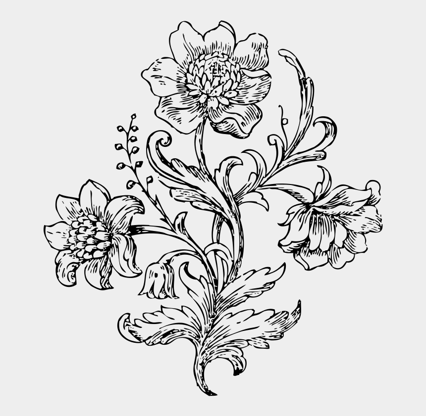 vintage flowers clipart, Cartoons - Visual Arts Flower Drawing
