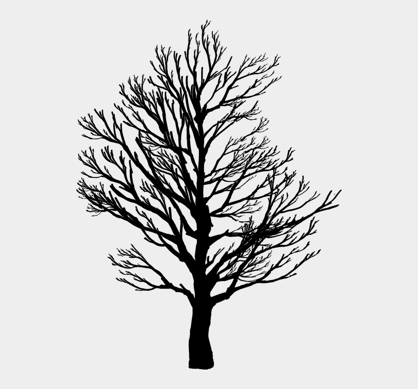 tree of life silhouette clip art, Cartoons - Barren, Branches, Nature, Plant, Plants, Silhouette - Barren Tree Silhouette