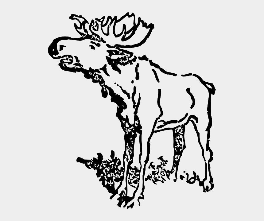antlers cartoon clipart, Cartoons - Loud, Moose, Animal, Antlers, Head, Cartoon - Black And White Moose Clip Art Realistic