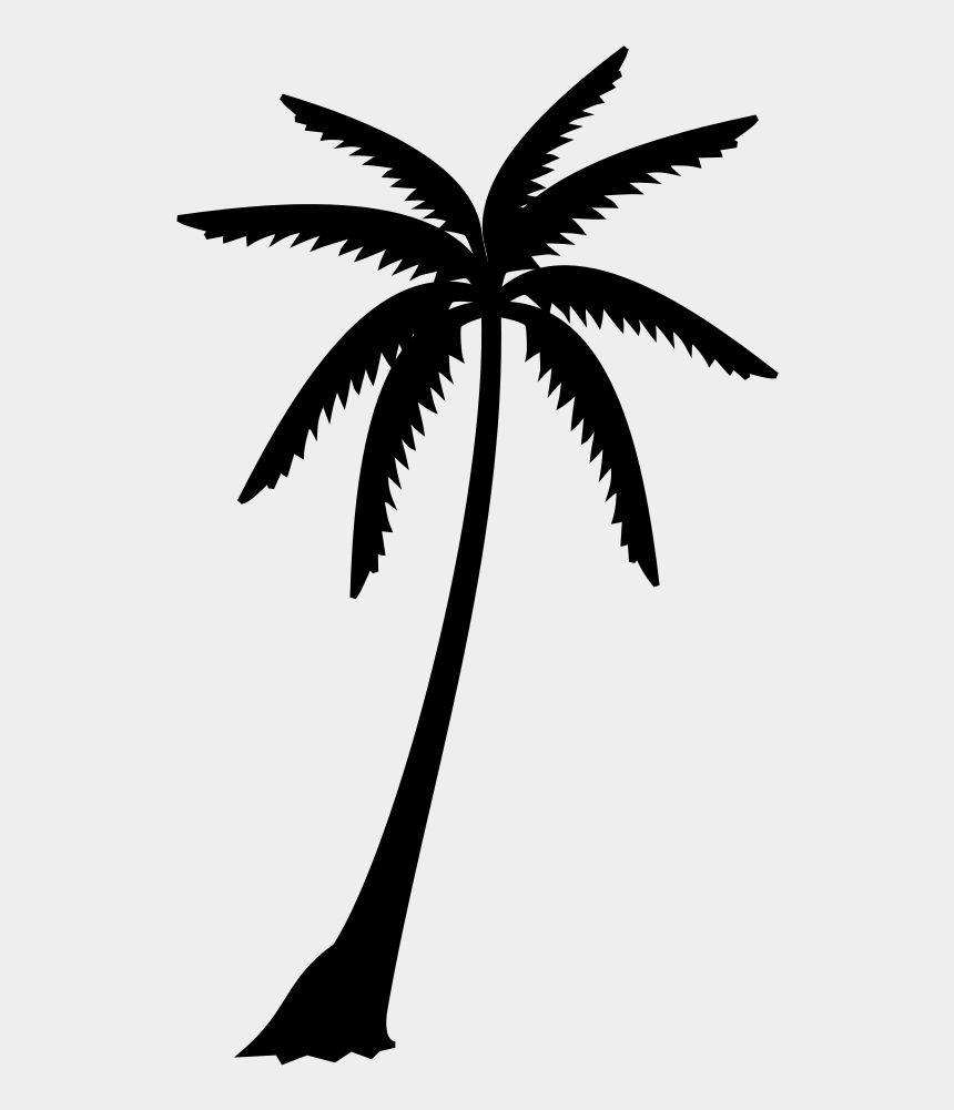 coconut leaves clip art, Cartoons - Palm Trees Black & White - Silhouettes Of Palm Tree Leaf