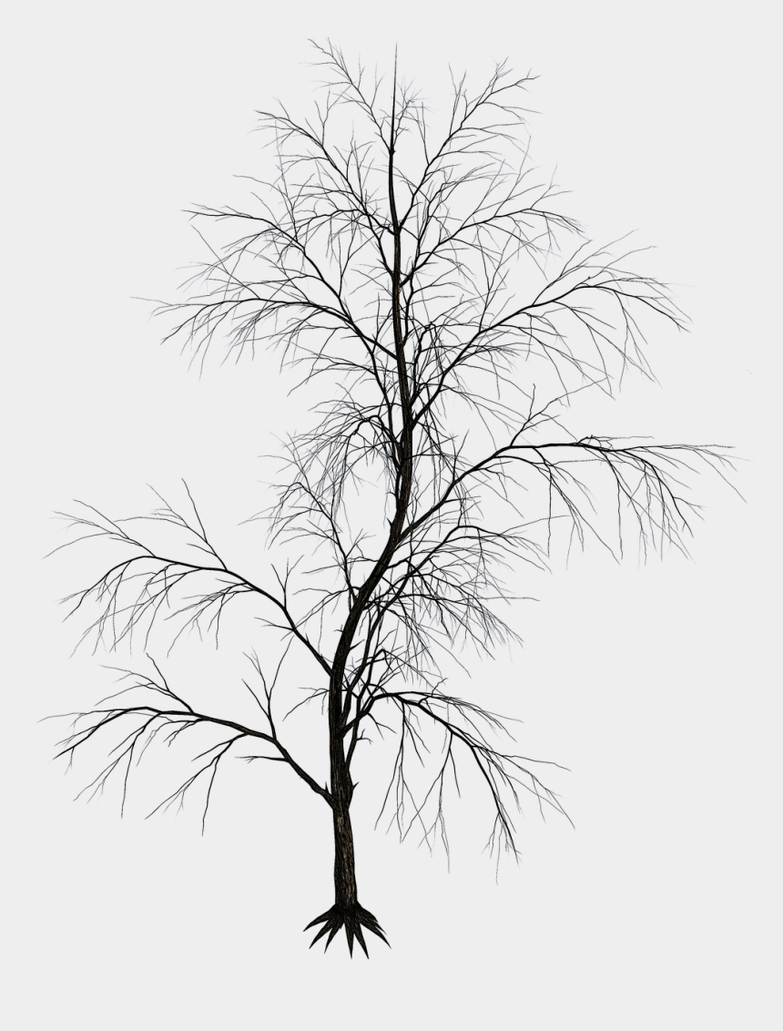 Black And White Twig Aesthetics Image Drawing Aesthetic Tree Png Cliparts Cartoons Jing Fm Here you can explore hq cartoon tree transparent illustrations, icons and clipart with filter setting like size, type, color etc. black and white twig aesthetics image