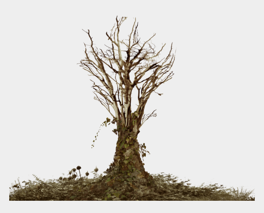free clipart dead tree, Cartoons - Dead Tree With Ivy Png Landsc - Dead Tree Png
