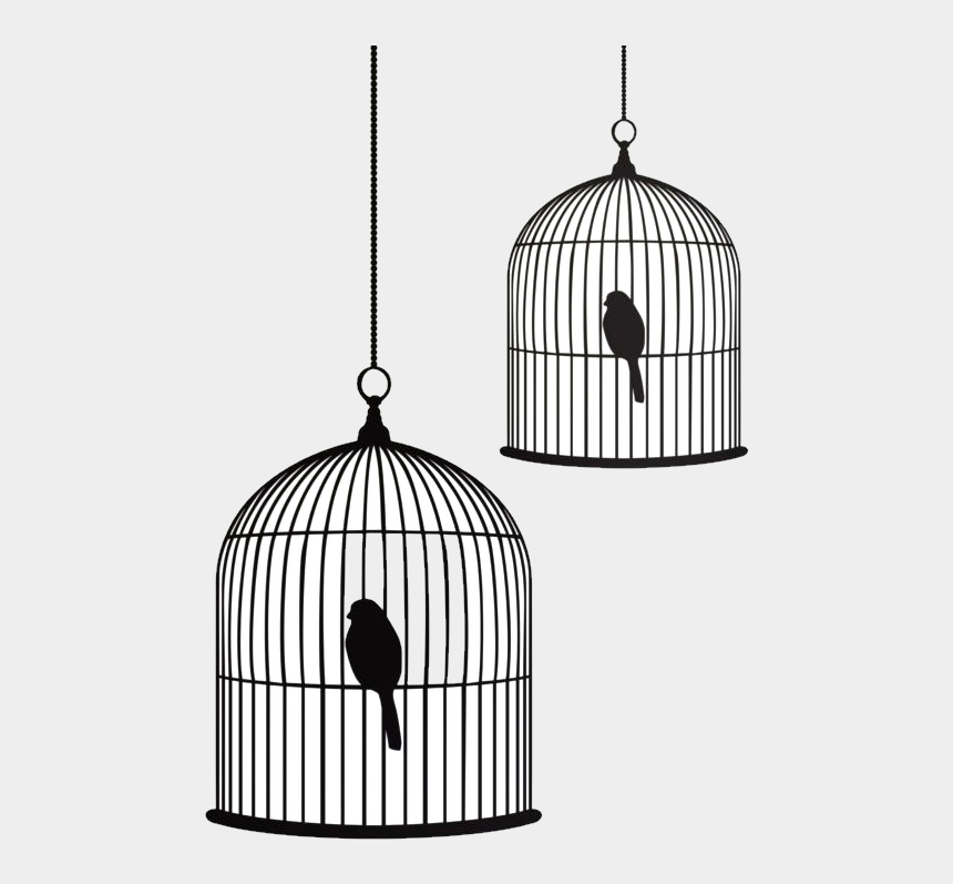 open birdcage clipart, Cartoons - Birdcage Stencil Drawing - Bird And Cage Drawing