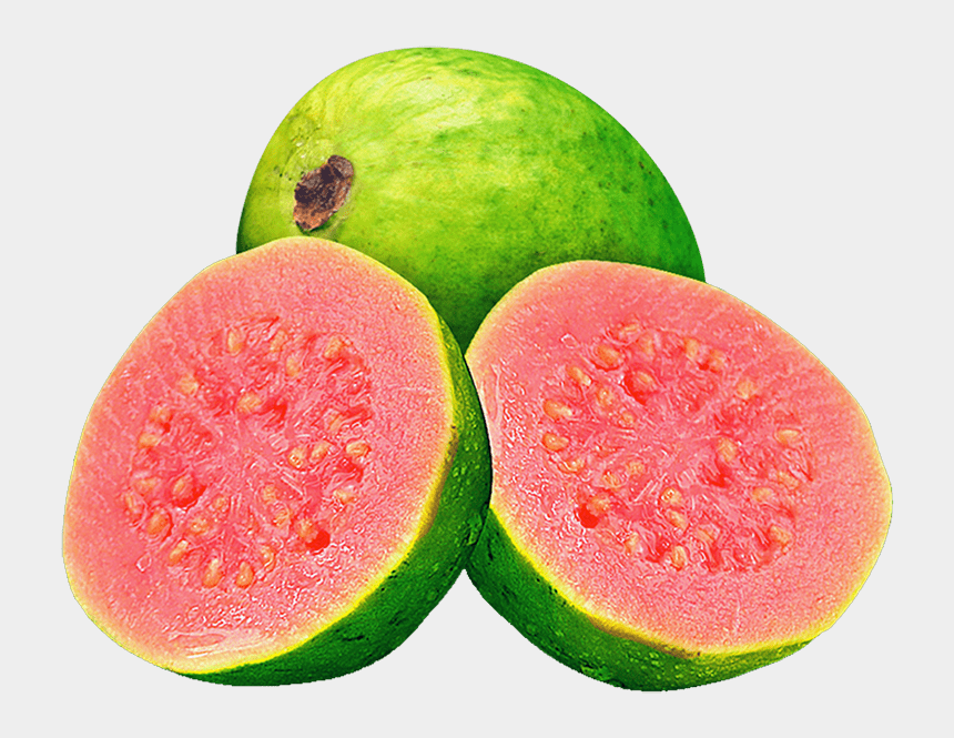 clipart of watermelon juice, Cartoons - Watermelon Juice Common Guava Fruit - Suco De Goiaba Png