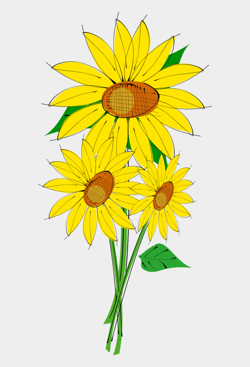 black eyed susan clipart, Cartoons - Vector Clip Art - Sunflowers Clipart Transparent Background