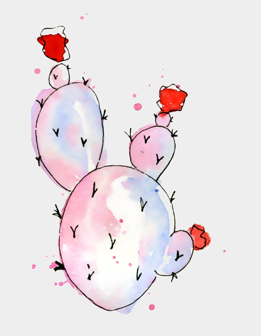 Pink Blue Cactus Watercolor Hand Painted Transparent