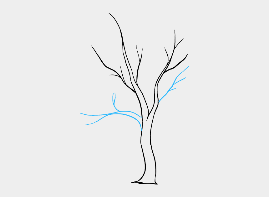 fall tree clipart png, Cartoons - How To Draw A Fall Tree - Fall Tree Drawing Easy