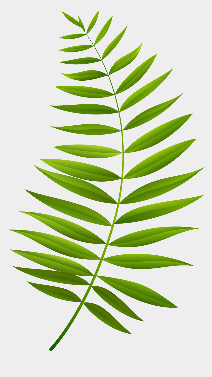 olive branches clipart, Cartoons - Palm Branch Transparent Clip Art Imageu200b Gallery - Palm Branch Png