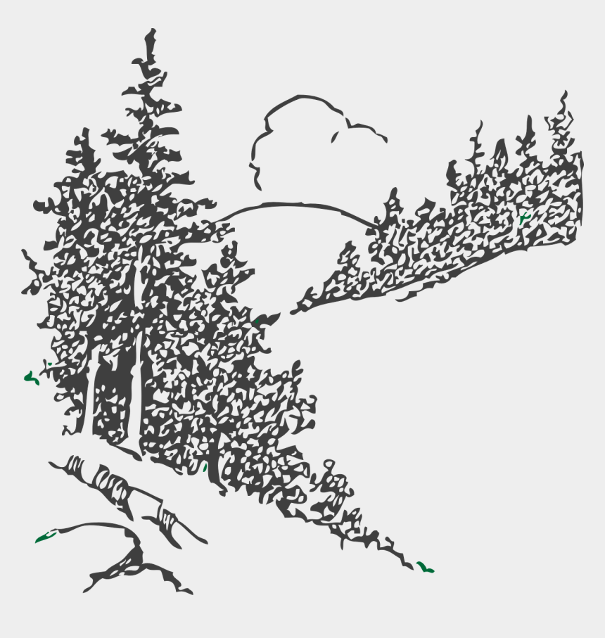 evergreen tree clipart black and white, Cartoons - Forest, Trees, Forest, Pines, Country Side - Line Art Pine Trees