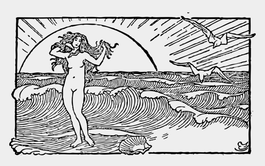shell clip art, Cartoons - Venus And The Half Shell - Line Drawing Of The Ocean