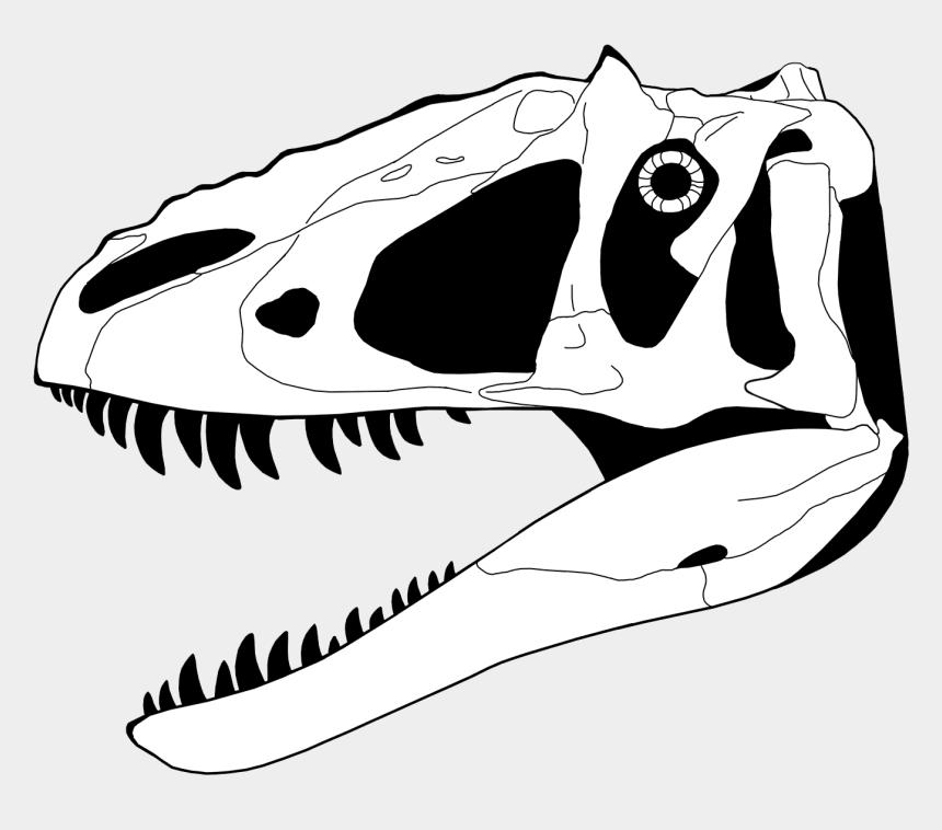 dinosaurs clipart, Cartoons - Dinosaur Skeleton Coloring Pages - Dinosaur Skull Coloring Pages