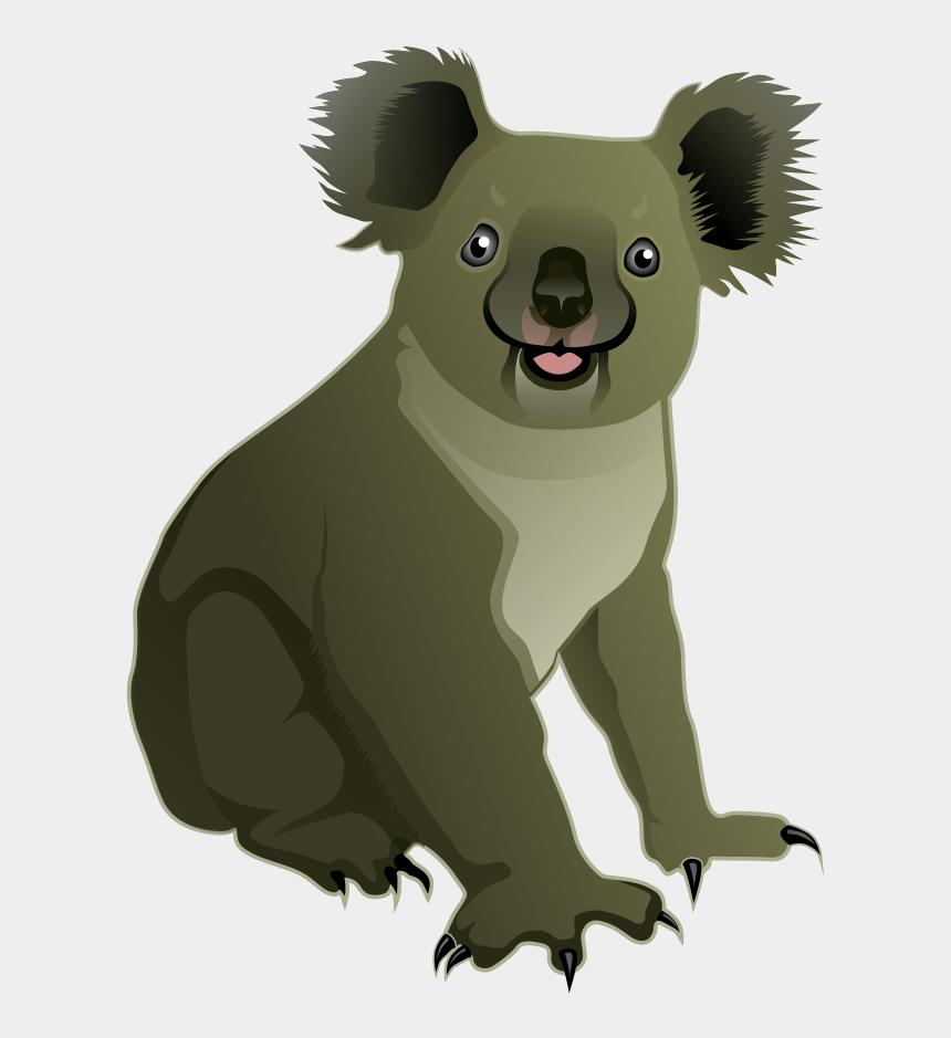 clip art animals, Cartoons - Koala Png - Koala Clipart Realistic