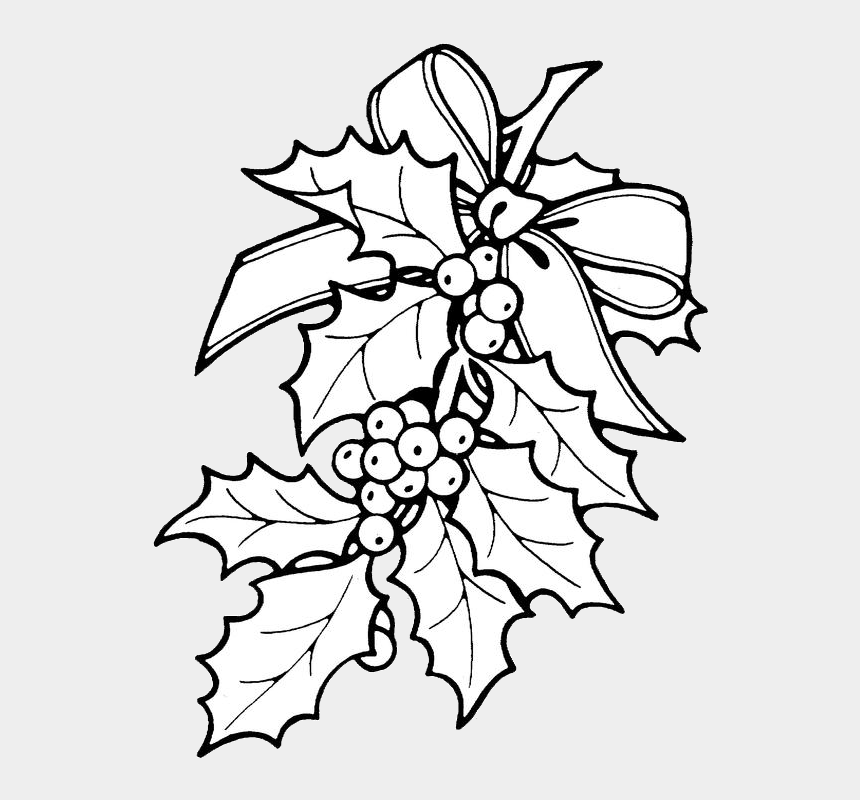 christmas garland clip art, Cartoons - Holly Berries Png - Christmas Holly Coloring Pages
