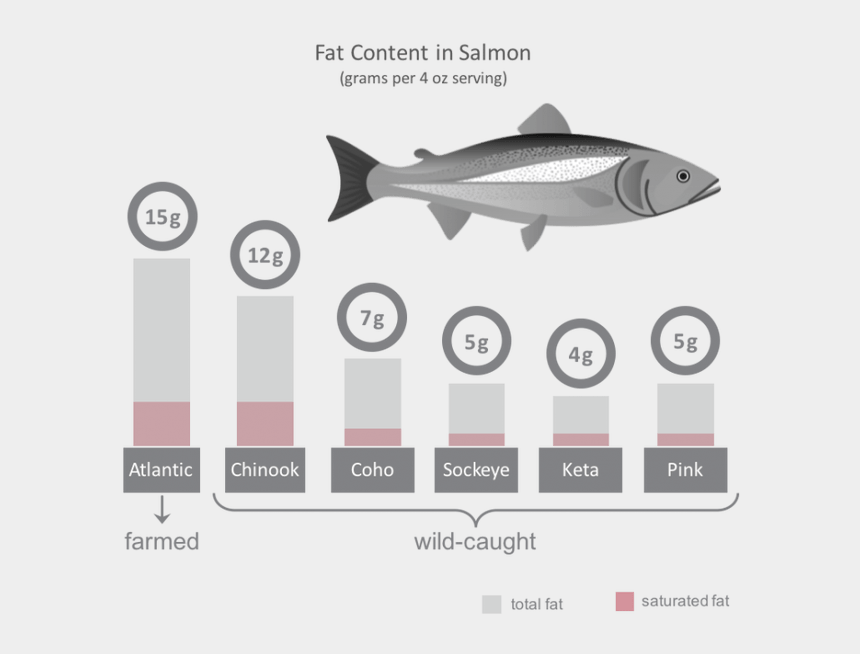salmon clipart, Cartoons - Salmon Clipart Fish Meal - Venn Diagram Of Wild And Farm Raised Salmon