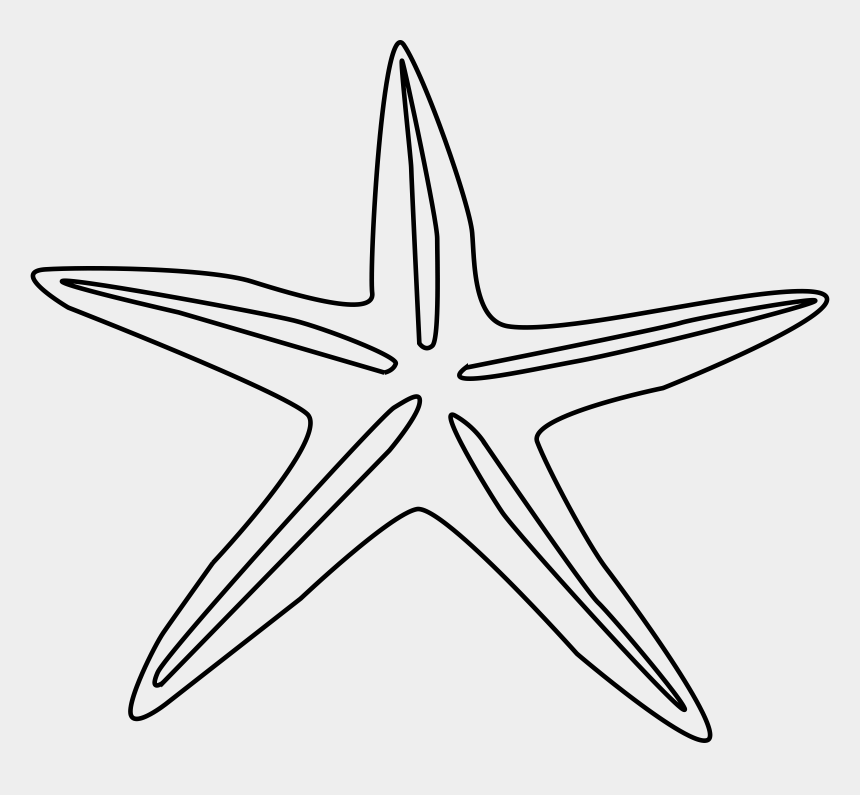 turtle clip art, Cartoons - Png Starfish Black And White Transparent Starfish Black - Starfish Drawing Black And White