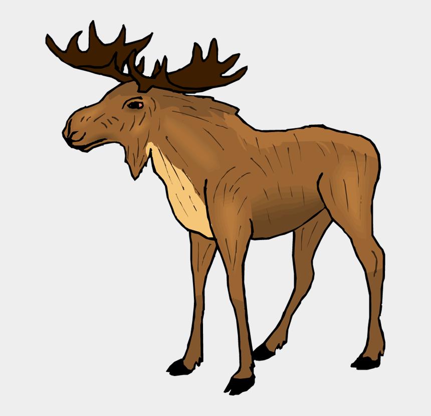 moose clip art, Cartoons - Moose Clipart Cartoon Free Images - Moose Clipart