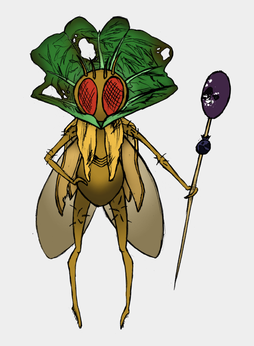 flies clipart, Cartoons - Drawing Insect Fruit Fly - Does A Queen Fly Look Like