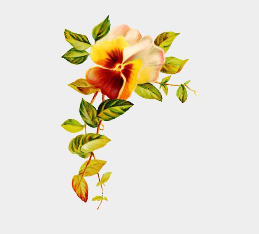 magnolia clipart black and white, Cartoons - Digital Scrapbooking Flowers - Corner Flower Design Png